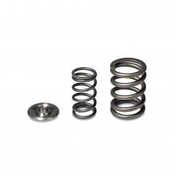 H-Series Alpha Valve Spring and Titanium Retainer Kit