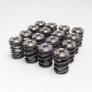 Alpha Valve Spring and Ti Retainer Kit - K20/K24 & F20C/F22C