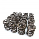 F, H-Series VTEC Alpha Valve Springs